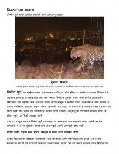 LEOPARDS IN THE CITY by परीक्षित सूर्यवंशी - PARIKSHIT SURYAVANSHIमराठी मित्र - Marathi Mitra