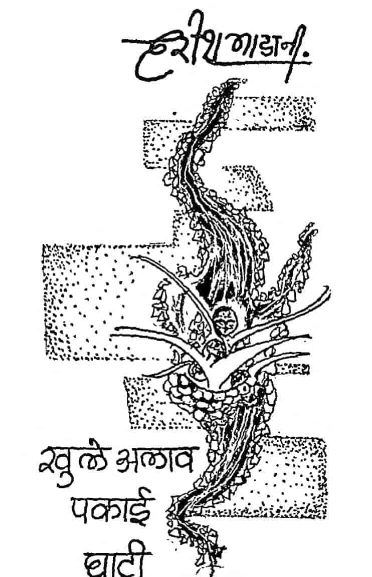 Book Image : खुले अलाव पकाई घाटी - Khule Alav Pakai Ghati