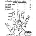 Samudrik Shastra Ya Bhagya Nirny by छोटेलाल जैन - Chhotelal Jain
