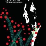 GULMEHNDI by केदारनाथ अग्रवाल -KEDARNATH AGRAWALपुस्तक समूह - Pustak Samuh