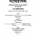 Shatakhandagam by पंडित हीरालाल जैन - Pandit Heeralal Jainबालचन्द्र सिद्धान्त शास्त्री - Balchandra Siddhant-Shastri