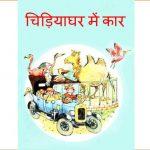 Chidiyaghar Mein Car by पुस्तक समूह - Pustak Samuh