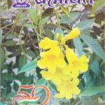 Brahmavarta - Akashvani Patrika  by डॉ करुणा शंकर दुबे - Dr Karuna Shankar Dubey