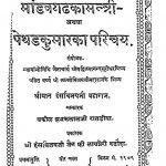 Manvghad Ka Santri by विजय हंस - Vijay Hans