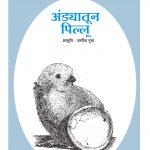 FROM EGG TO CHICK by अरविन्द गुप्ता - ARVIND GUPTAपुस्तक समूह - Pustak Samuh