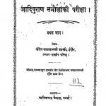 Aadipuran Samiksha ki Priksha Pratham Bhag by लालारामजी शास्त्री - Lalaramji Shastri