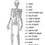 Swasthaya Kala Or Grah - Prabhand by अज्ञात - Unknown
