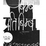 Bimb Pratibimb by राम जैसवाल - Ram Jaisaval