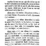 Paramhans Swami Ramtirth Ji Maharaj by अज्ञात - Unknown